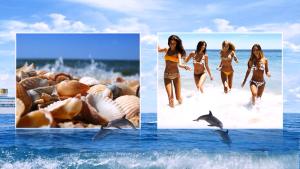 Beach vacation templates